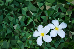 Niski poli- kwiat Fotografia Royalty Free