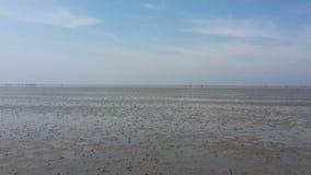 Niski przypływ Bałtycki widzii Zdjęcia Stock