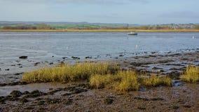 Niski przypływ przy Topsham Fotografia Royalty Free