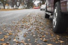 Niskiego kąta widok parkujący liśćmi ciężarówka Zdjęcie Royalty Free