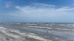 Niskiego przypływu przespacerowanie Wzdłuż plaży zdjęcie royalty free