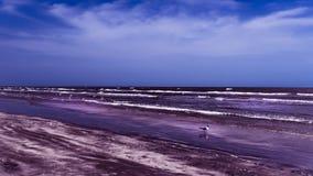 Niskiego przypływu przespacerowanie Wzdłuż plaży fotografia royalty free
