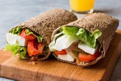 Niskokalorycznej diety opakunek z serem, pomidorami, sałatką i pomarańcze, Ju zdjęcie stock