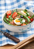 Nisoise salad in the bowl Royalty Free Stock Photography