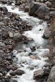 Nisqually lodowa nakarmoina rzeka zdjęcia royalty free