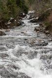 Nisqually lodowa nakarmoina rzeka obrazy royalty free