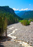 Nisqually River, Mount Rainier National Park Royalty Free Stock Photos