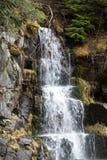 Nisqually rzeka w zimie obraz stock