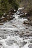 Nisqually rzeka w zimie zdjęcia stock