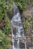 Nisqually rzeka w zimie fotografia royalty free