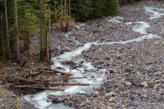 Nisquallygletsjer Rocky River Basin Stock Foto