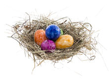 Nest mit Ostereiern auf Weiß Lizenzfreies Stockbild