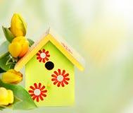 Nistkasten und gelbe Tulpen Stockfoto