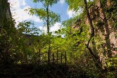 Niszczący wojną, przerastającą drzewami i bluszcz ruinami mieszkanie dom w Tquarchal Obraz Royalty Free