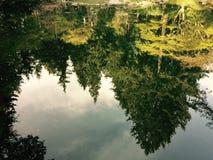 Nitobe 1 Στοκ φωτογραφίες με δικαίωμα ελεύθερης χρήσης