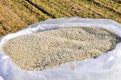 Nitrogenous fertilizer Stock Image