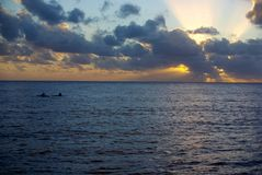 Niue Kayak Sunset Stock Photography