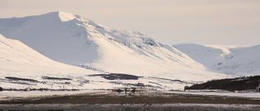 Nivå på flygplatsen av Akureyri Royaltyfri Bild