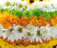 Niveaux des fleurs photo libre de droits