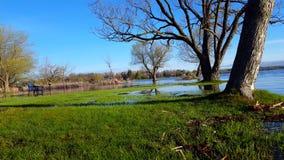 Nivel del agua de levantamiento cada vez mayor en naturaleza Resultado del cambio de clima Parque inundado despu?s de la tormenta almacen de metraje de vídeo