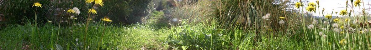 Nivel del suelo Foto de archivo libre de regalías