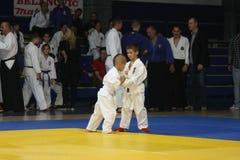 Nivelamento das artes marciais Imagem de Stock