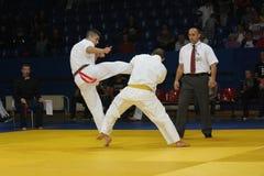 Nivelamento das artes marciais Foto de Stock