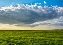 Nivelando céus nebulosos na mola Imagens de Stock