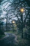 Nivelando a cena da rua, Nitra, filtro análogo fotos de stock
