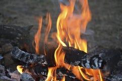 Nivelando a fogueira no acampamento do escuteiro imagens de stock