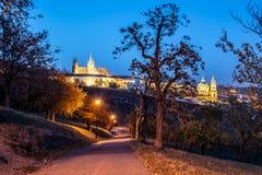 Nivelando a vista do castelo de Praga iluminado, Prazsky Hrad, dos jardins de Petrin, Praga República checa imagem de stock royalty free