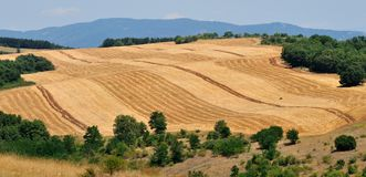 Niveles agrícolas Fotografía de archivo