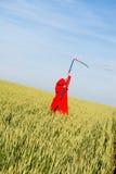 żniwiarki czerwieni serie Fotografia Stock