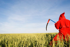 żniwiarki czerwieni serie Fotografia Royalty Free
