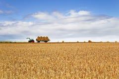 Żniwo czas na gospodarstwie rolnym Zdjęcia Stock
