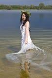 Nixe im Wasser Stockfotografie