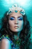 Nixekönigin in der korallenroten Krone Stockfotografie