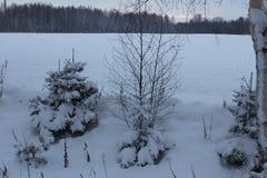 Niza un winterday Imágenes de archivo libres de regalías