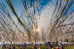 Nizhniy Novgorod, Russia - 24 luglio 2016: festival di musica elettronico - AFP fotografia stock libera da diritti