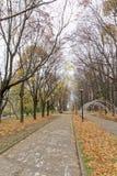 Nizhny Novgorod俄国 - 10月13日 2016年 秋天风景在亚历山大公园 免版税库存照片
