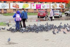 Nizhny Novgorod, Russia. - October 06.2017. Children teens feed a large flock of pigeons on the prospectus of the 70th anniversary Stock Photos