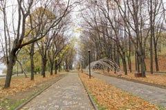 Nizhny Novgorod russia - Oktober 13 2016 Autumn Landscape i Alexander Garden Royaltyfri Foto