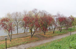 Nizhny Novgorod russia - Oktober 13 2016 Autumn Landscape i Alexander Garden Royaltyfria Bilder