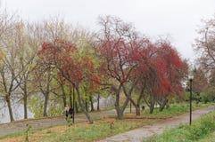 Nizhny Novgorod russia - Oktober 13 2016 Autumn Landscape i Alexander Garden Royaltyfri Fotografi