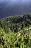 Nizke Tatry - baixo Tatras Imagens de Stock Royalty Free