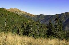 Nizke Tatry - baixo Tatras Imagem de Stock