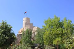 Nizwa Fort,  trees and blue-sky, Oman Stock Photo