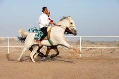 Omani men showing off their riding skills. Royalty Free Stock Photo
