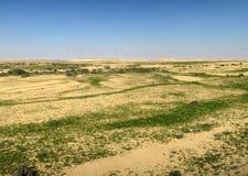Nizzana, deserto di Negev, Israele fotografia stock libera da diritti