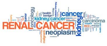 Njur- cancer vektor illustrationer